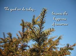 happiness trees